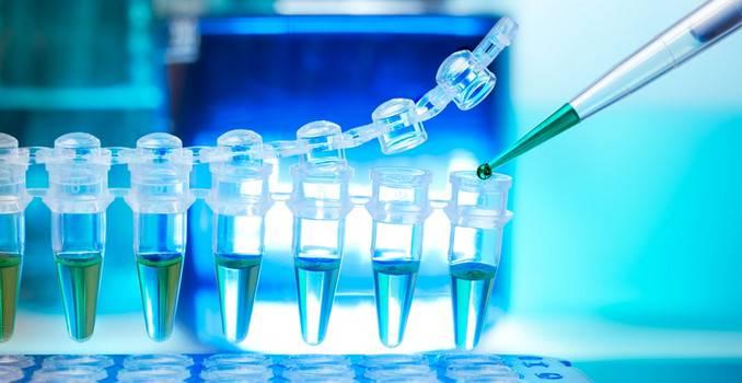 Что такое вирусная нагрузка при гепатите с