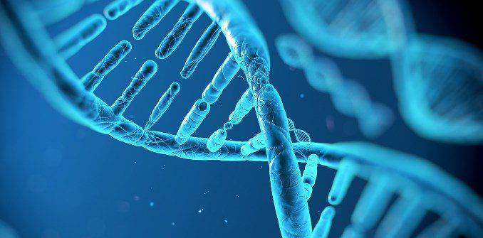 Гепатит с 1в генотип
