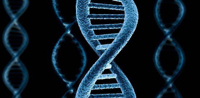 Гепатит с генотип 2 a