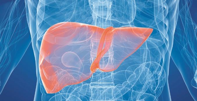 Гепатит когда переходит в цирроз печени