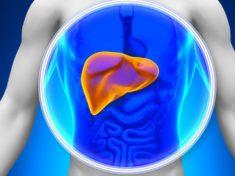 Патогенез и этиология цирроза печени
