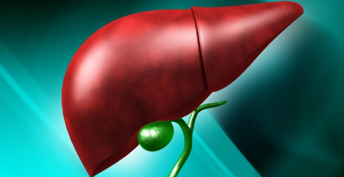 Лечение цирроза печени: препараты и лекарства