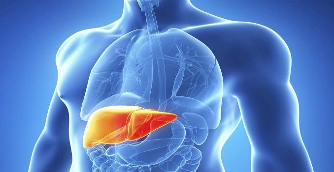 Кардиальный цирроз печени: причины и лечение