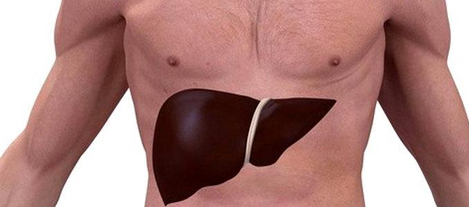 Диффузные изменения печени: лечение и основные симптомы
