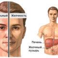 Синдром Жильбера: код по МКБ и клинические рекомендации