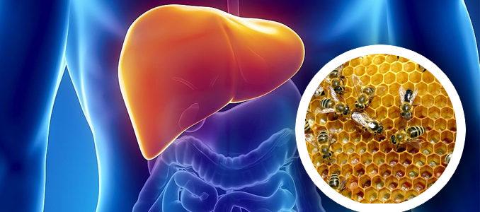Лечение рака печени народными средствами: рецепты и рекомендации